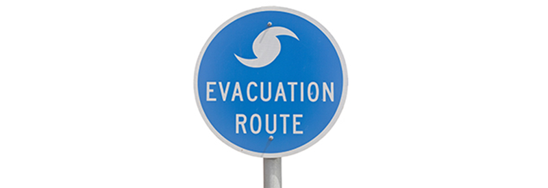 Natural disaster survival guide